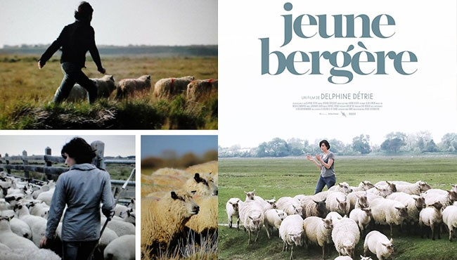 Jeune bergère de Stéphanie Détrie et La Guerre des moutons de Franck Serre